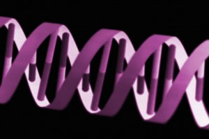 Are Genetics The Key?