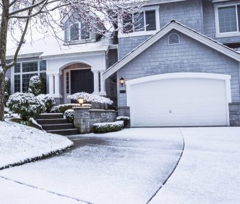 The Severity of a Winter Impacts Pest Numbers